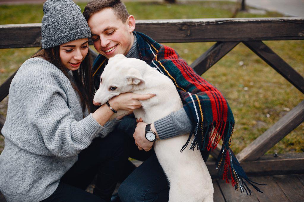regalá perros en adopción