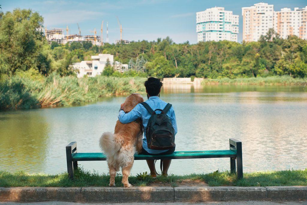 Buenos Aires la ciudad de los perros